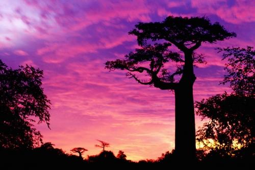 Красивый закат на Мадагаскаре