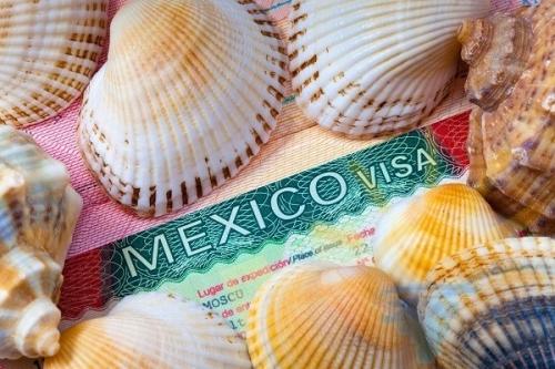 Мексиканская виза