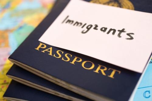 Паспорта иммигрантов