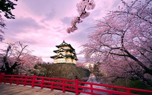 Красивый вид на достопримечательность в Японии