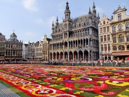Цветочный ковер в Бельгии