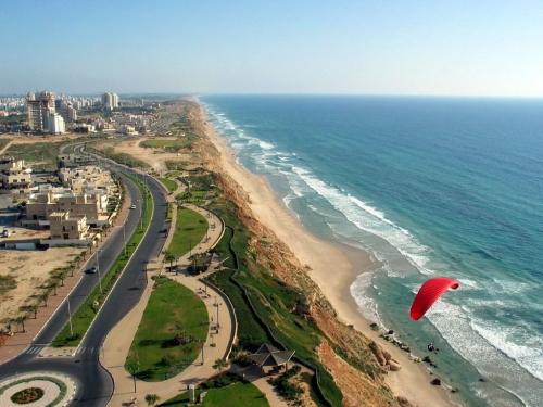 Если гражданину израиля выплачивают гонорар нужна ли ему виза в рф
