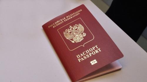 Изображение - Можно ли иметь второе гражданство россиянину 424_img4